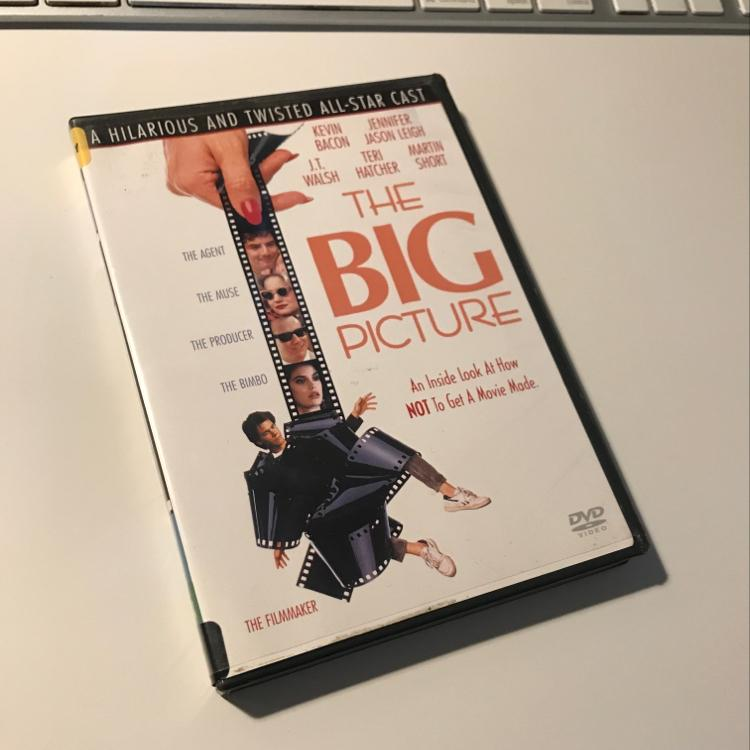The Big Picture, dir Christopher Guest #dvd #film