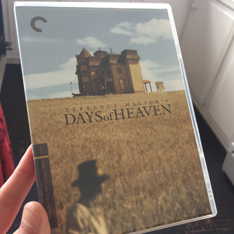 Days of Heaven, dir Terrence Malick #criterion #dvd #wheat