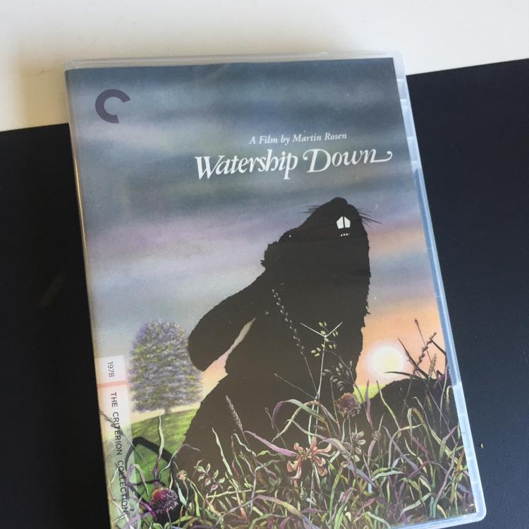 Watership Down, dir Martin Rosen #criterion #dvd